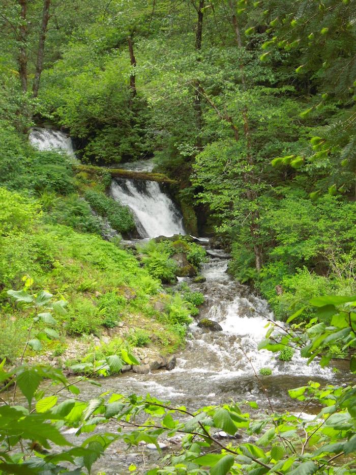 Lalolu Falls DSCN1597