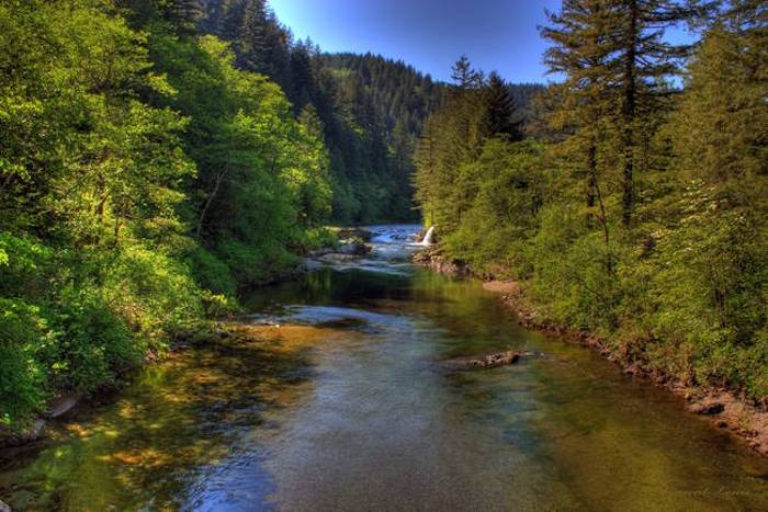 News of clark county multi gen market report nature as for Washougal river fishing