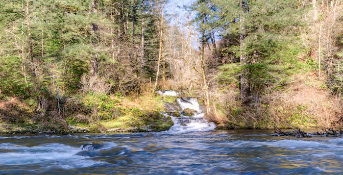 Nature as neighbors for Washougal river fishing